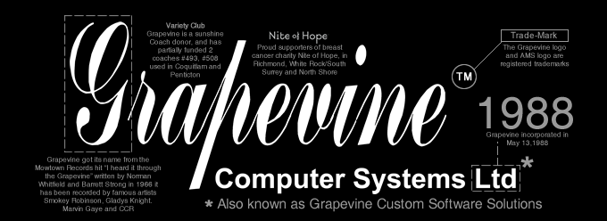 Grapevine Computer Systems, Grapevine Custom Software solitions